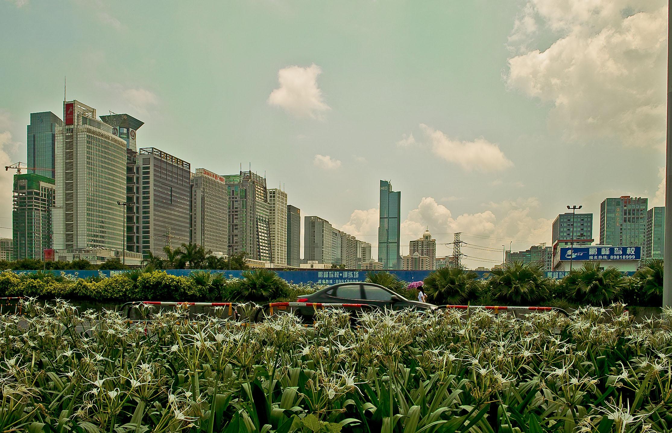 Shenshen near Zhuzilin station